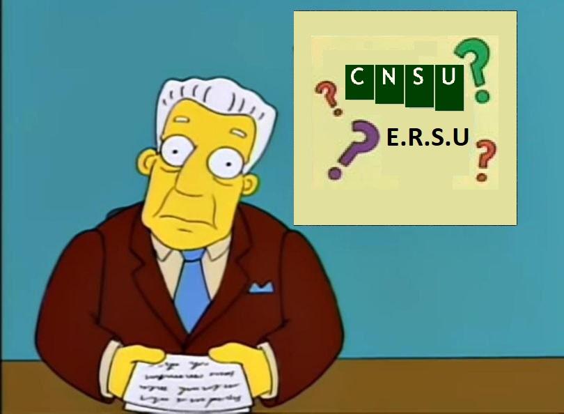 Elezioni ERSU e CNSU: riepilogo di tutti i nostri approfondimenti