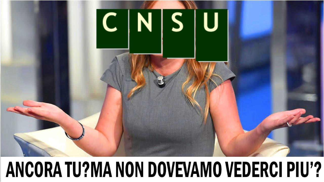 CNSU, ma non dovevamo vederci più? E dove sono i risultati?
